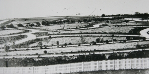 Panorama of Geelong Botanic Gardens c 1864